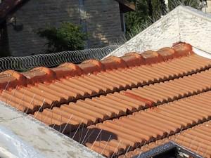 קפיץ מקפיץ ודוקרנים על גג רעפים